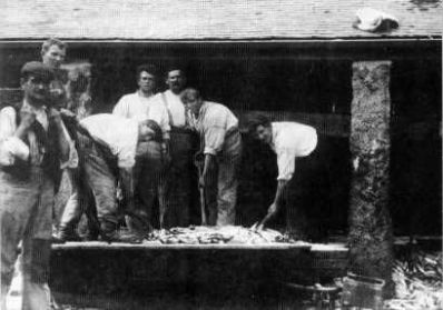 Salting the fish at Sennen