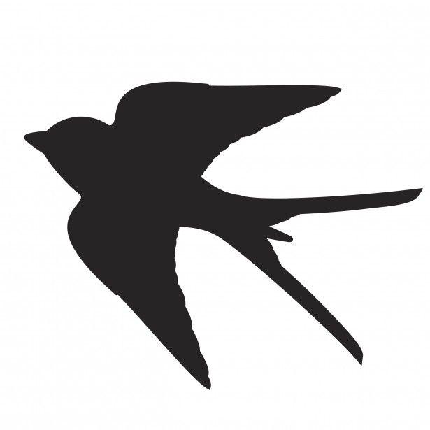 54a1cfc41fb2462530c2404f48c3ddc1--bird-silhouette-swallow