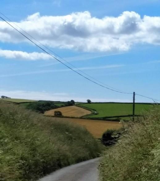 1 summer lanes